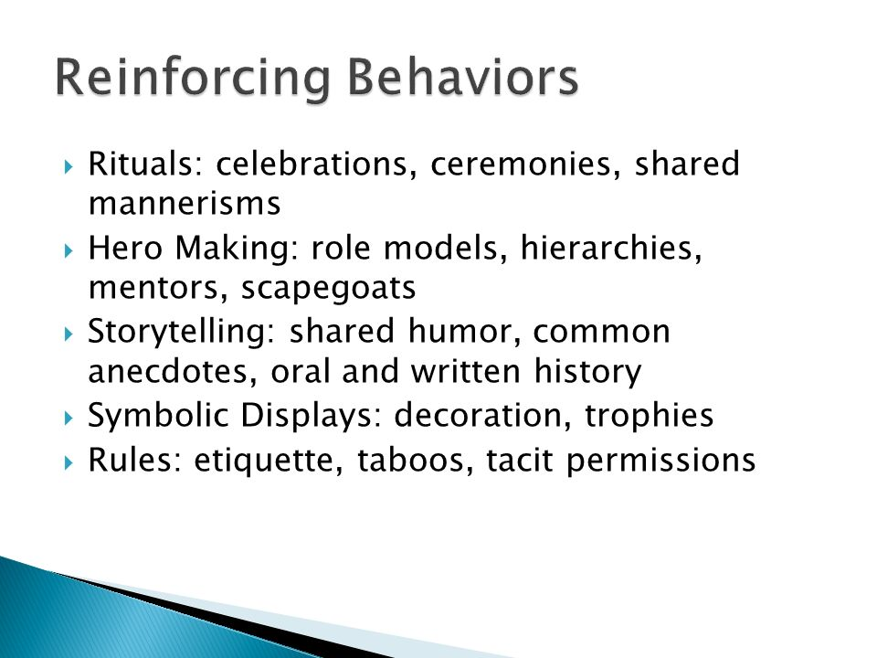 Rituals: celebrations, ceremonies, shared mannerisms Hero Making: role models, hierarchies, mentors, scapegoats Storytelling: shared humor, common ane
