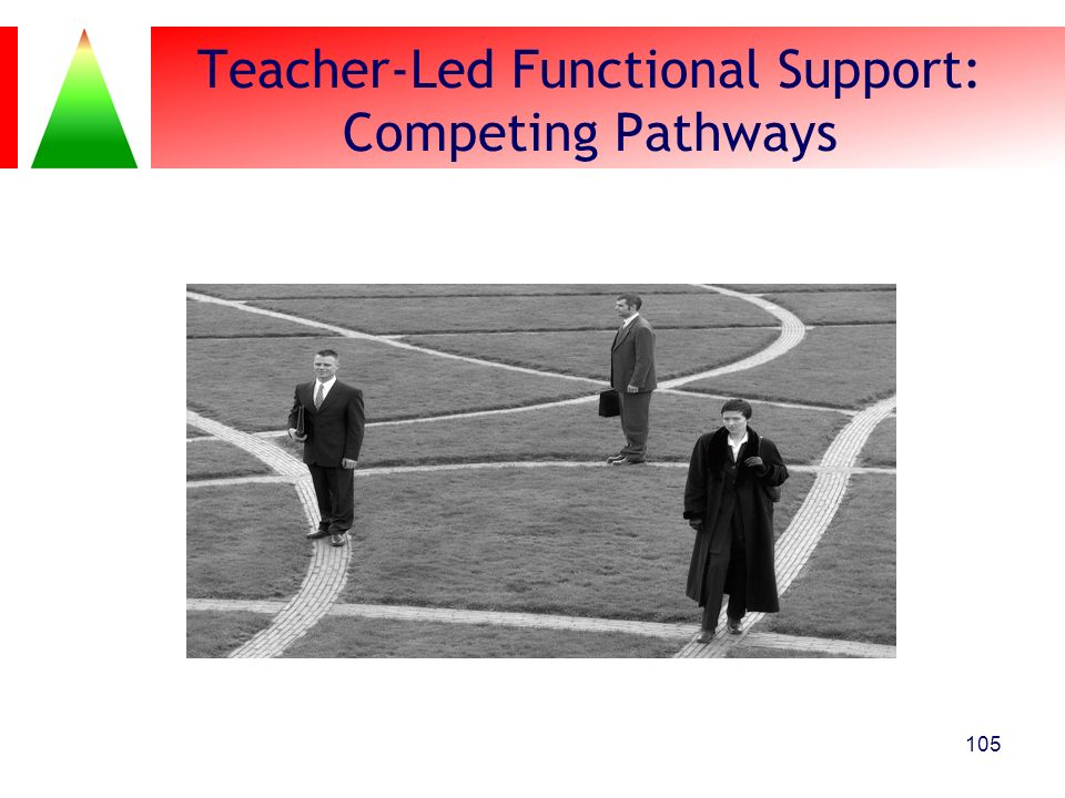 Teacher-Led Functional Support: Competing Pathways 105