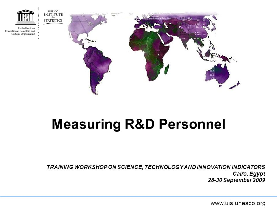 Measuring R&D Personnel TRAINING WORKSHOP ON SCIENCE, TECHNOLOGY AND INNOVATION INDICATORS Cairo, Egypt September 2009