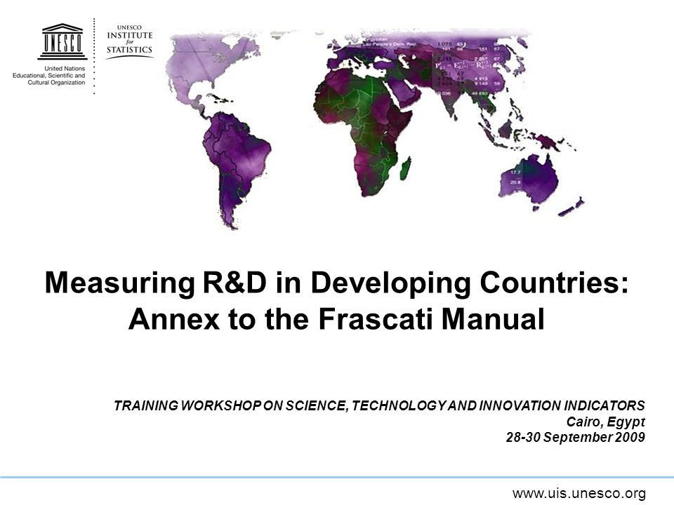 Measuring R&D in Developing Countries: Annex to the Frascati Manual TRAINING WORKSHOP ON SCIENCE, TECHNOLOGY AND INNOVATION INDICATORS Cairo, Egypt September 2009