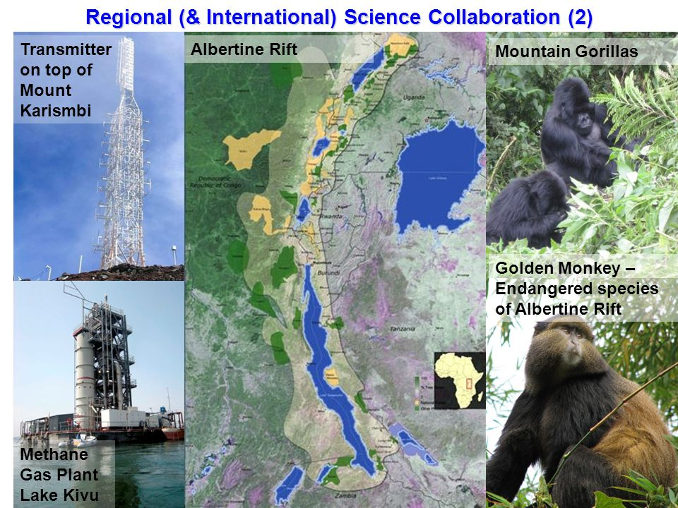 Transmitter on top of Mount Karismbi Methane Gas Plant Lake Kivu Mountain Gorillas Golden Monkey – Endangered species of Albertine Rift Albertine Rift Regional (& International) Science Collaboration (2)