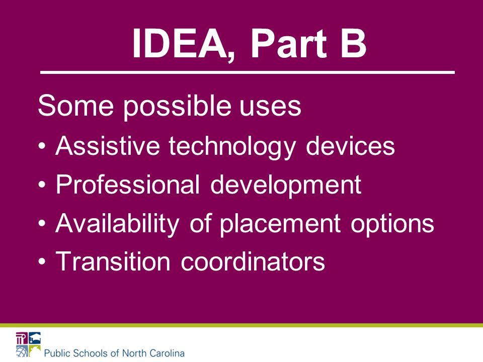 IDEA, Part B Some possible uses Assistive technology devices Professional development Availability of placement options Transition coordinators