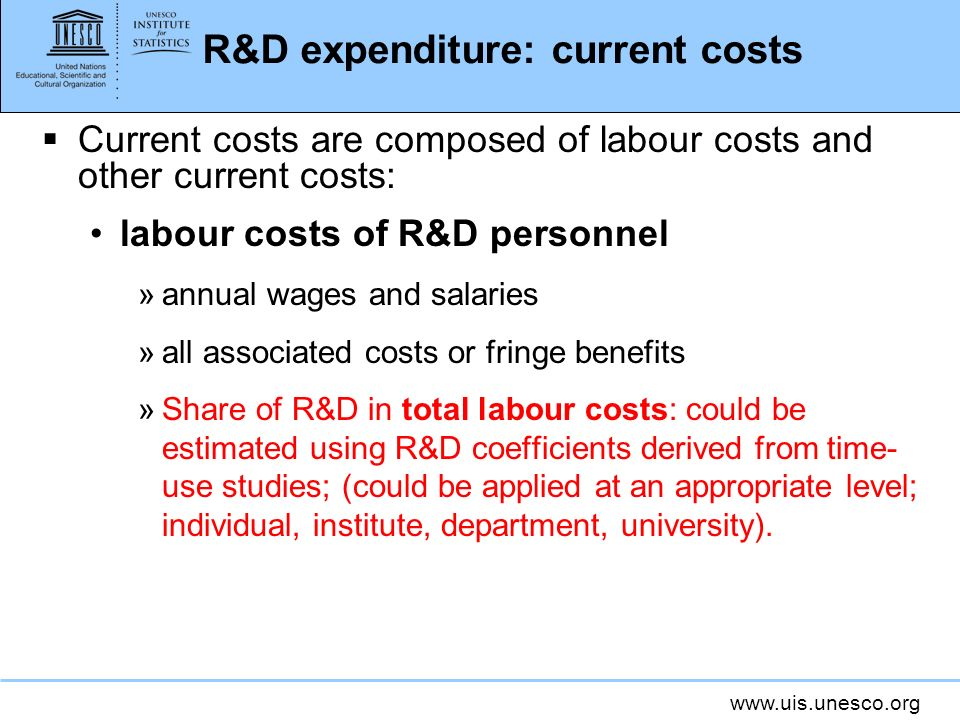 R&D expenditure: current costs Current costs are composed of labour costs and other current costs: labour costs of R&D personnel »annual wages and salaries »all associated costs or fringe benefits »Share of R&D in total labour costs: could be estimated using R&D coefficients derived from time- use studies; (could be applied at an appropriate level; individual, institute, department, university).