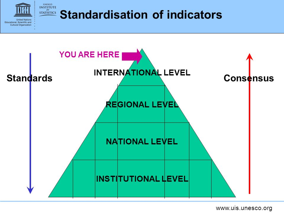 www.uis.unesco.org Standardisation of indicators INTERNATIONAL LEVEL REGIONAL LEVEL NATIONAL LEVEL INSTITUTIONAL LEVEL ConsensusStandards YOU ARE HERE