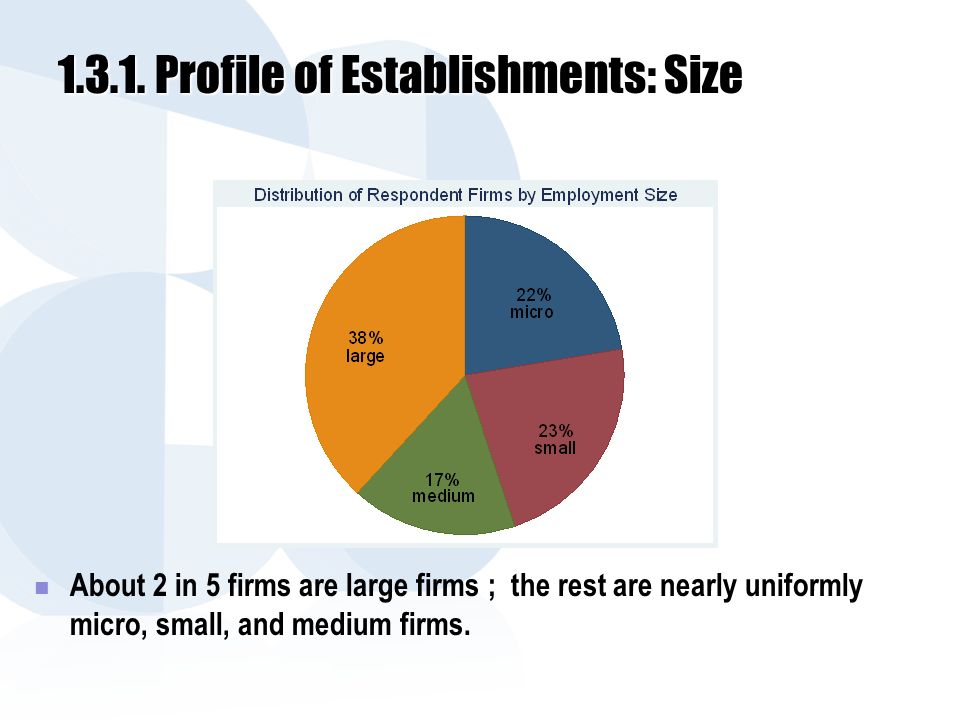 1.3.1. Profile of Establishments: Size About 2 in 5 firms are large firms ; the rest are nearly uniformly micro, small, and medium firms.