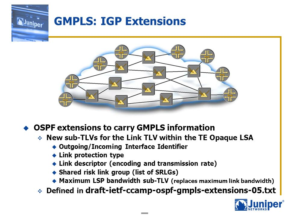 OSPF extensions to carry GMPLS information New sub-TLVs for the Link TLV within the TE Opaque LSA Outgoing/Incoming Interface Identifier Link protecti