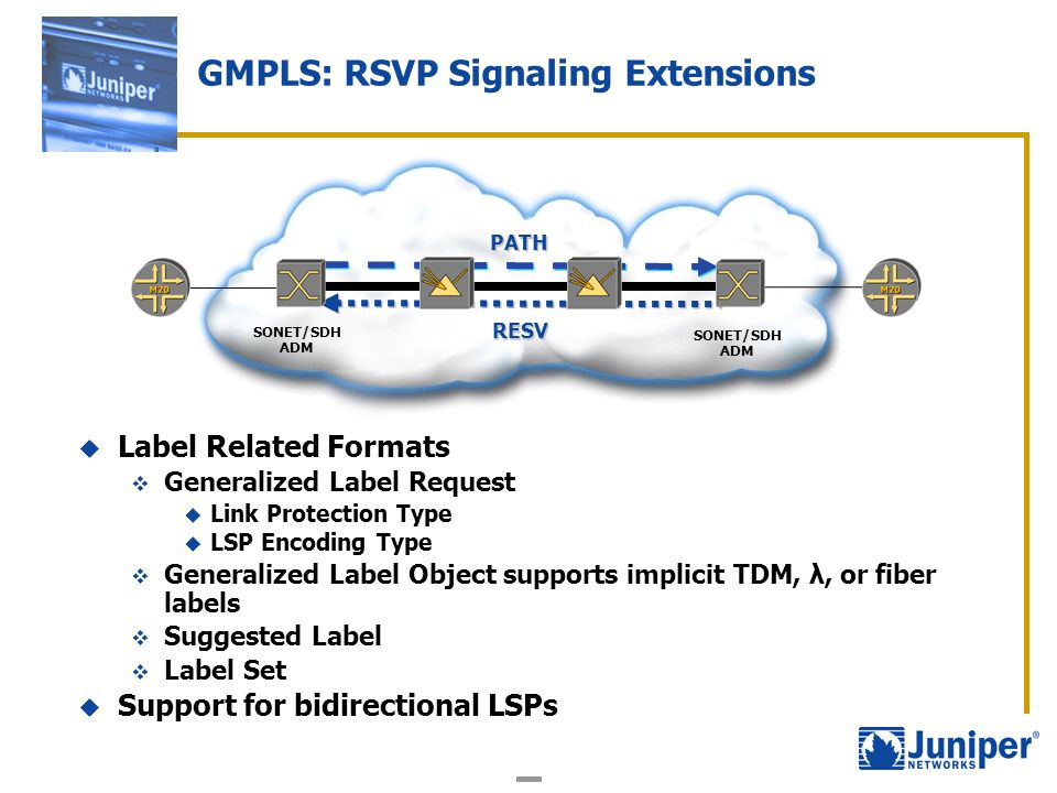 Label Related Formats Generalized Label Request Link Protection Type LSP Encoding Type Generalized Label Object supports implicit TDM, λ, or fiber lab