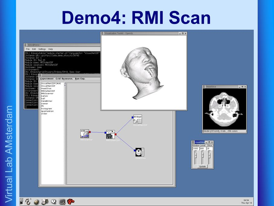 Virtual Lab AMsterdam Demo4: RMI Scan