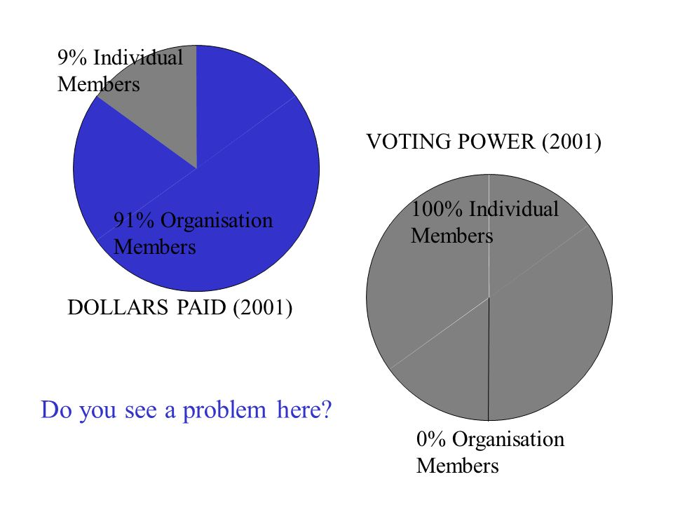 DOLLARS PAID (2001) 9% Individual Members 91% Organisation Members 100% Individual Members 0% Organisation Members VOTING POWER (2001) Do you see a problem here