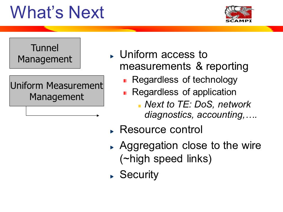 Whats Next Tunnel Management Uniform Measurement Management Uniform access to measurements & reporting Regardless of technology Regardless of application Next to TE: DoS, network diagnostics, accounting,….