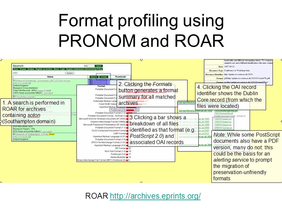 Format profiling using PRONOM and ROAR ROAR http://archives.eprints.org/http://archives.eprints.org/