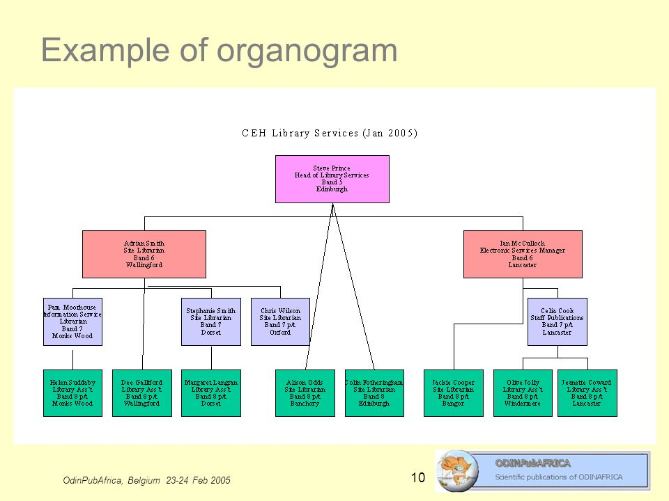 OdinPubAfrica, Belgium 23-24 Feb 2005 10 Example of organogram
