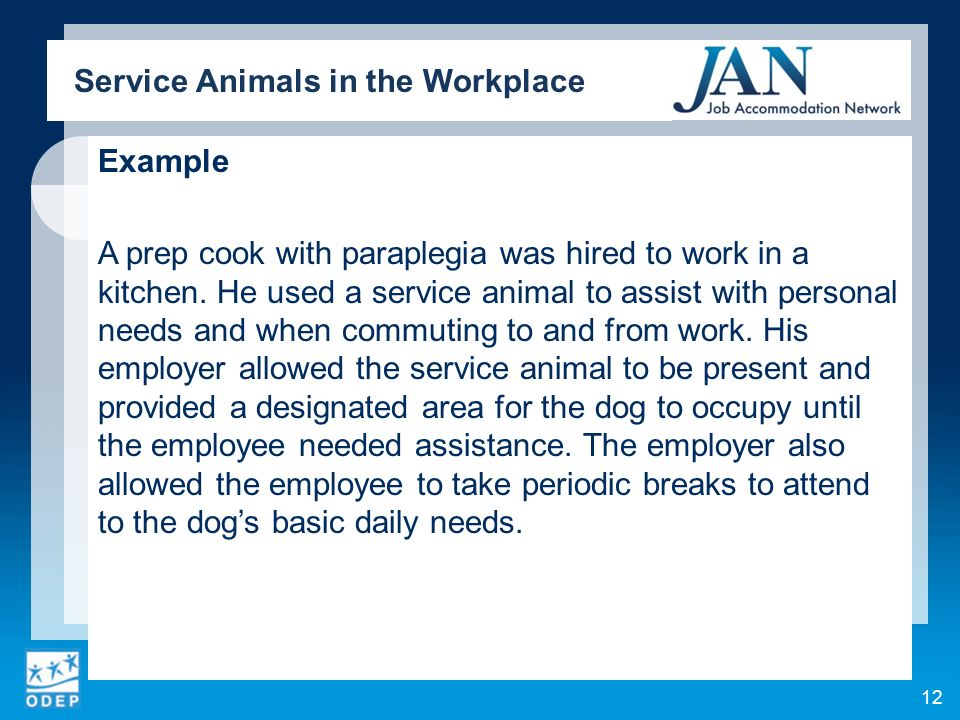 Example A prep cook with paraplegia was hired to work in a kitchen. He used a service animal to assist with personal needs and when commuting to and f