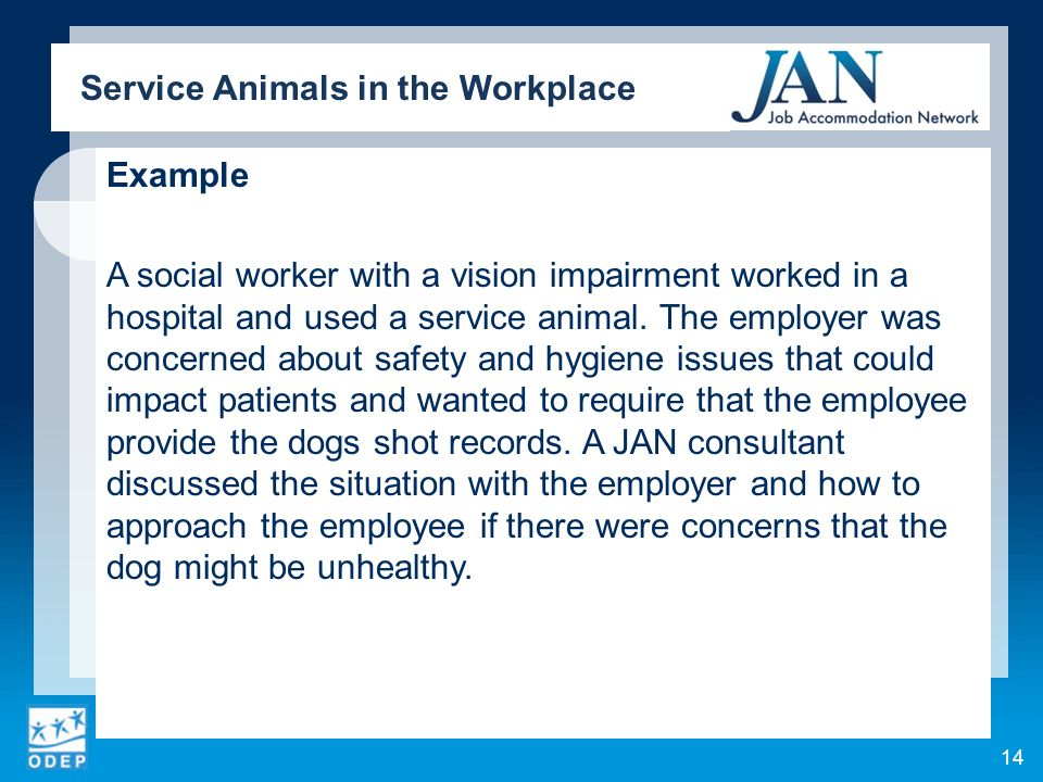 Example A social worker with a vision impairment worked in a hospital and used a service animal. The employer was concerned about safety and hygiene i
