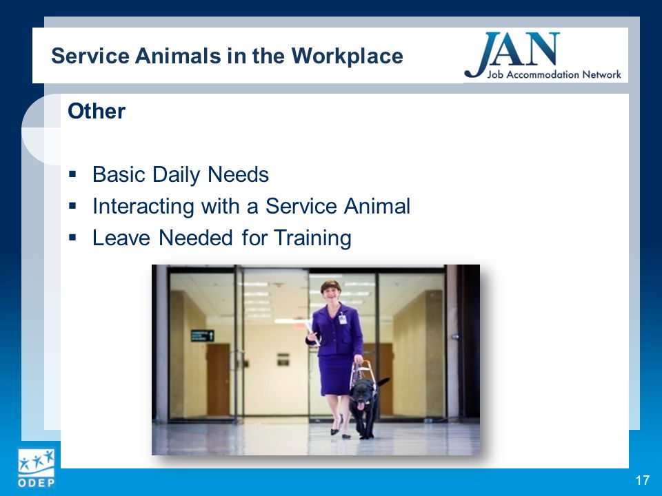 Other Basic Daily Needs Interacting with a Service Animal Leave Needed for Training Service Animals in the Workplace 17