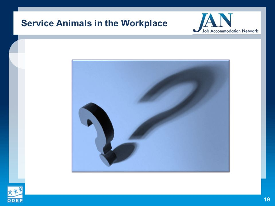 19 Service Animals in the Workplace