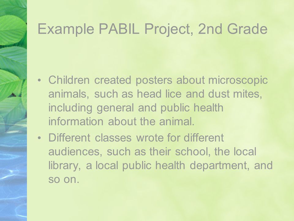 Example PABIL Project, 2nd Grade Children created posters about microscopic animals, such as head lice and dust mites, including general and public he