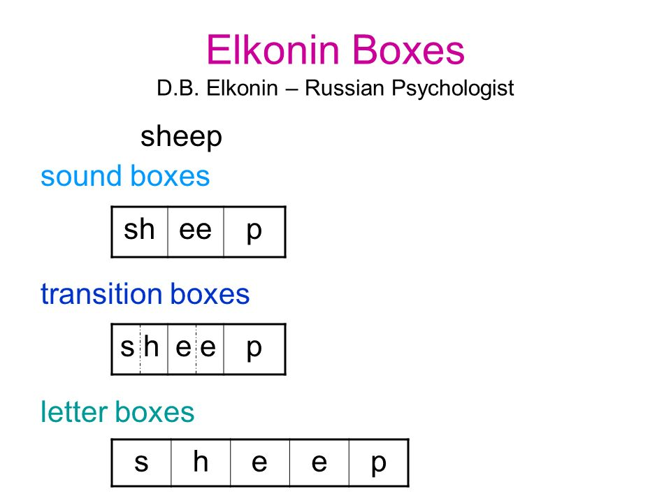 Elkonin Boxes D.B. Elkonin – Russian Psychologist sheep sound boxes transition boxes letter boxes sheep s he p sheep