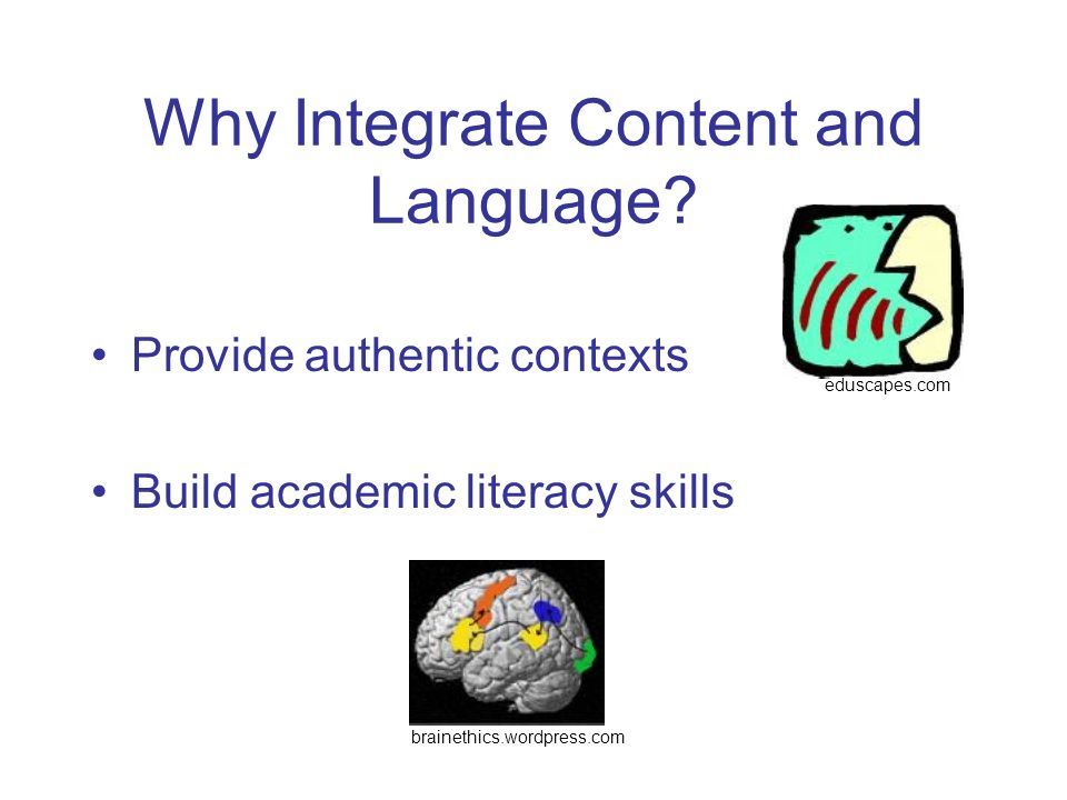 Why Integrate Content and Language? Provide authentic contexts Build academic literacy skills brainethics.wordpress.com eduscapes.com