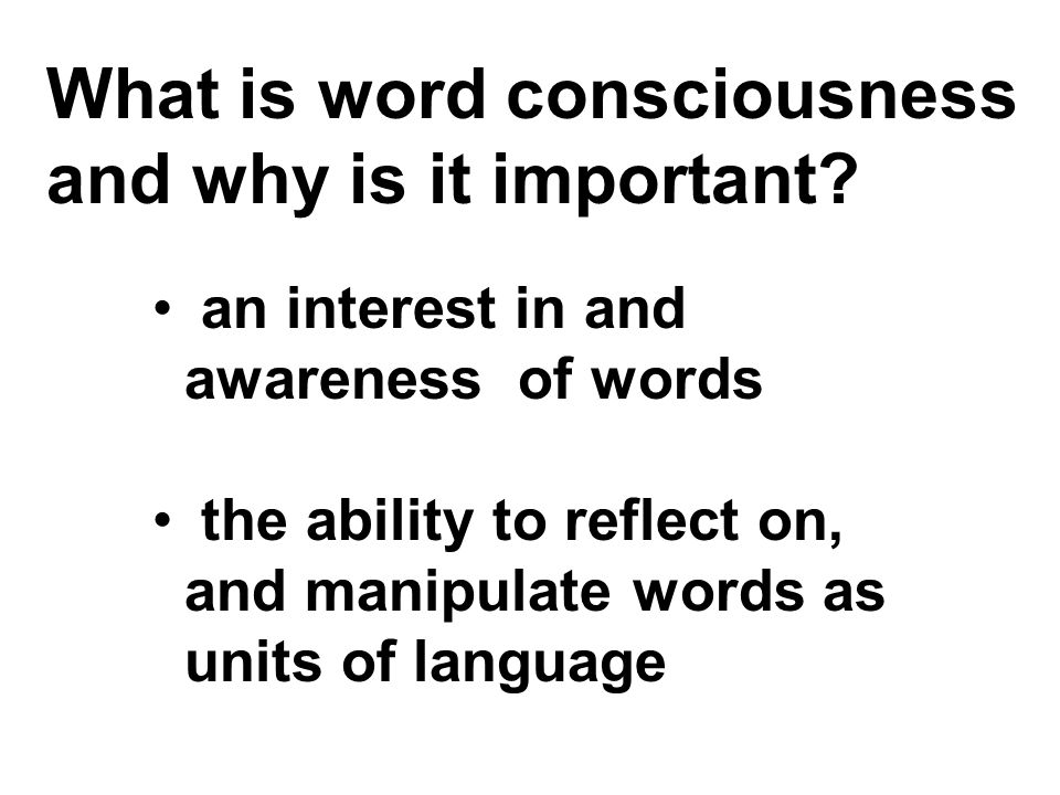 What is word consciousness and why is it important.