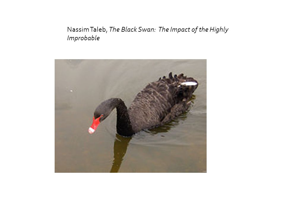 Nassim Taleb, The Black Swan: The Impact of the Highly Improbable