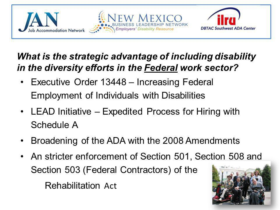 What is the strategic advantage of including disability in the diversity efforts in the Federal work sector.