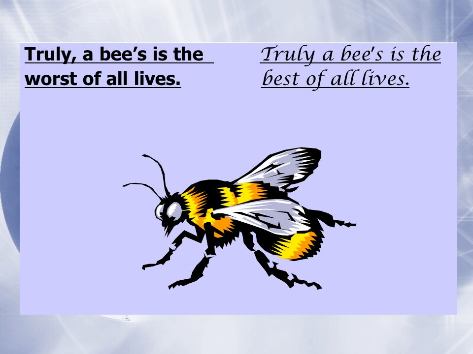 Truly, a bees is the Truly a bee s is the worst of all lives.