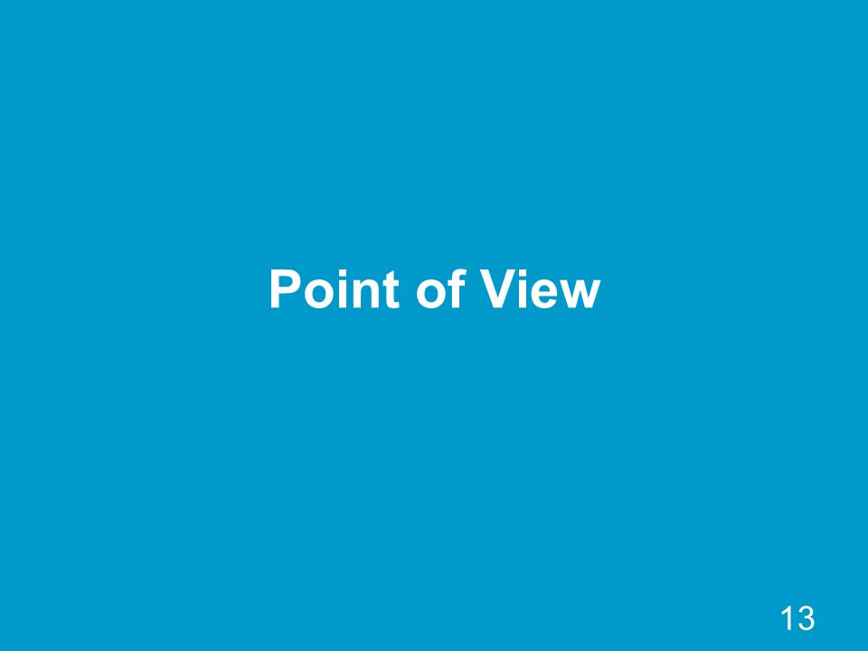 13 Point of View