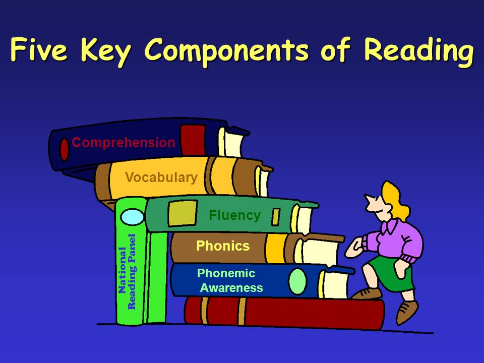Fluency Comprehension Phonics Phonemic Awareness Vocabulary National Reading Panel Five Key Components of Reading