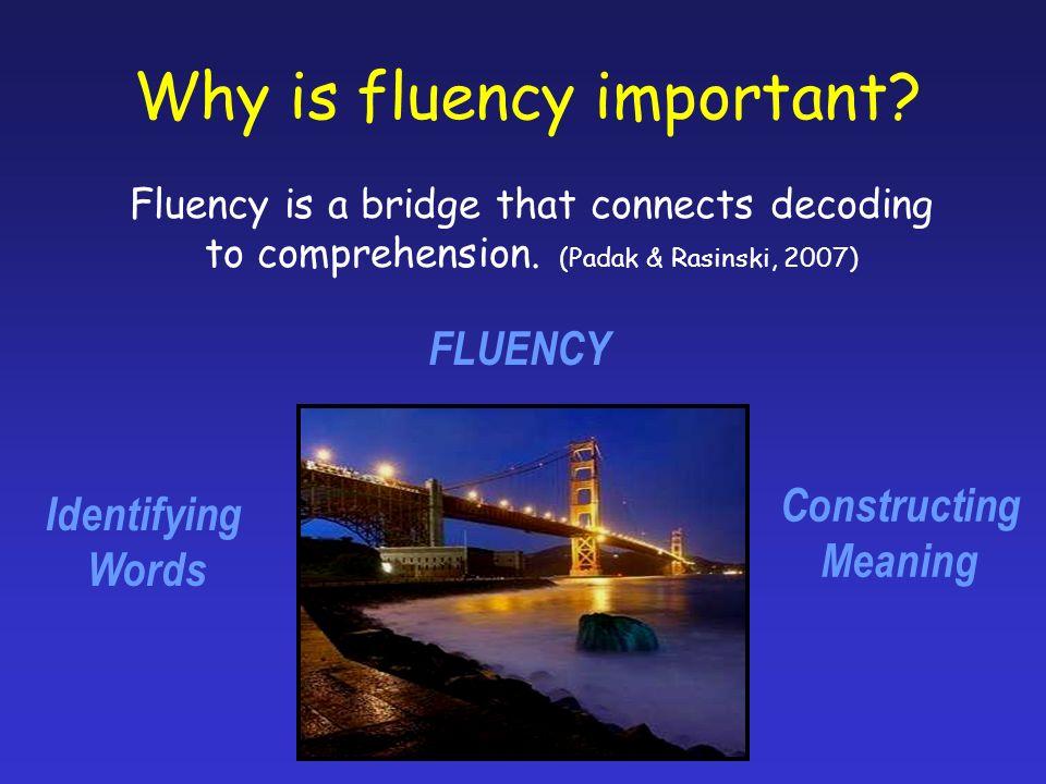 Reading Fluency Assessments Read Naturally Fluency Assessments 3-Minute Reading Assessments – Tim Rasinski (Scholastic) Readinga-z.com Fluency Passages Jerry Johns Fluency Assessments