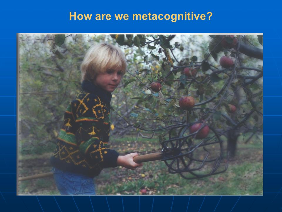 How are we metacognitive?