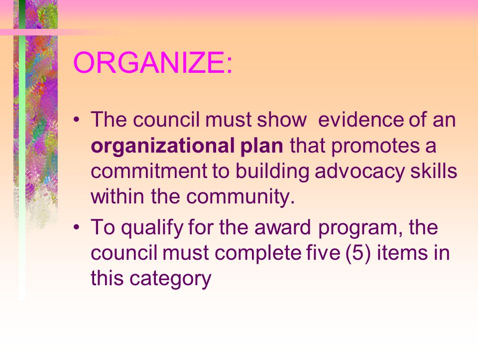 ORGANIZE: The council must show evidence of an organizational plan that promotes a commitment to building advocacy skills within the community.