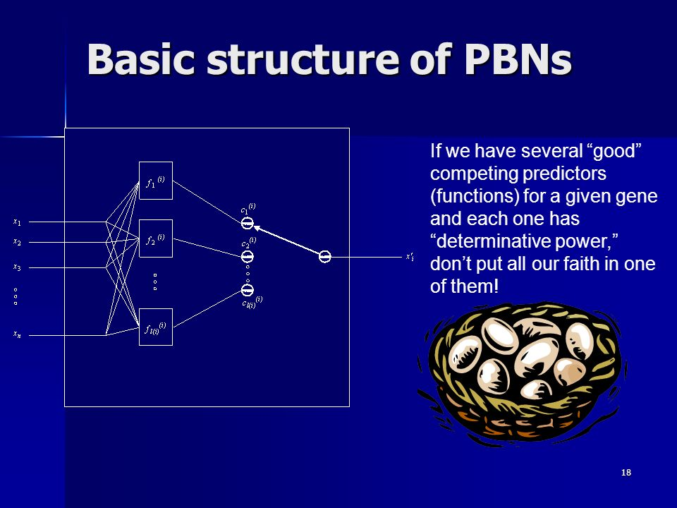 18 Basic structure of PBNs If we have several good competing predictors (functions) for a given gene and each one has determinative power, dont put al