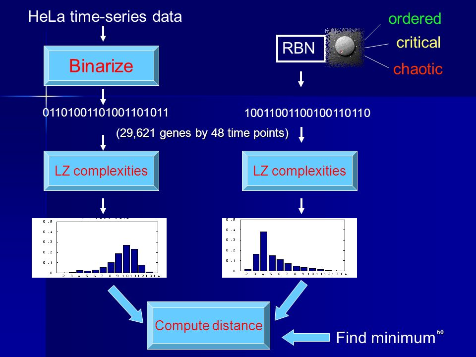 60 HeLa time-series data RBN Binarize 01101001101001101011 10011001100100110110 ordered critical chaotic LZ complexities Compute distance Find minimum