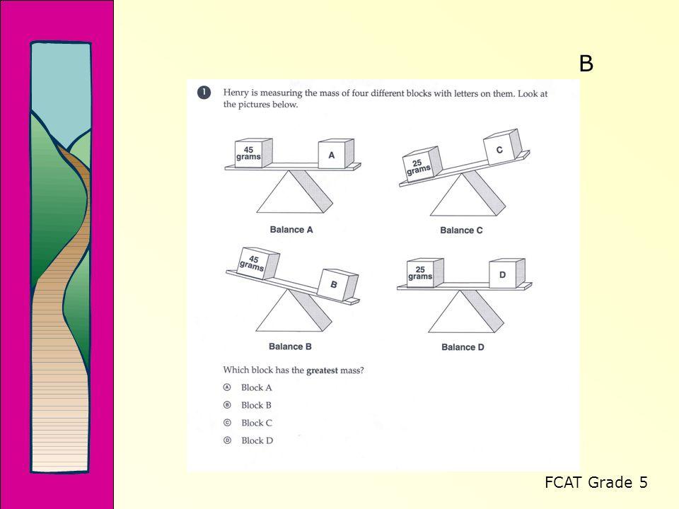 FCAT Grade 5 B