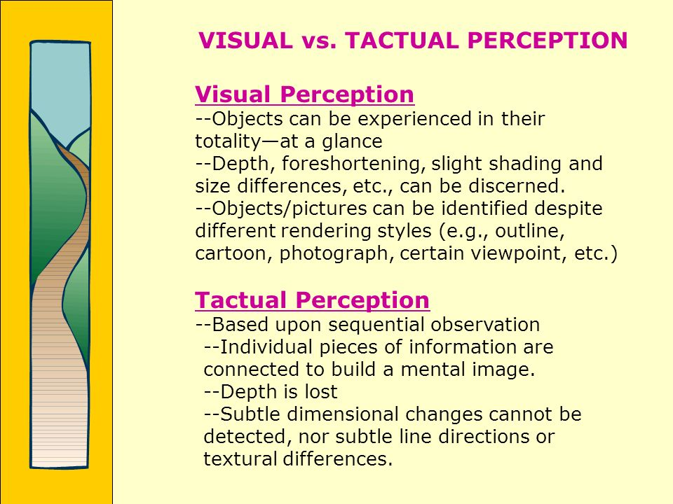 VISUAL vs. TACTUAL PERCEPTION Visual Perception --Objects can be experienced in their totalityat a glance --Depth, foreshortening, slight shading and