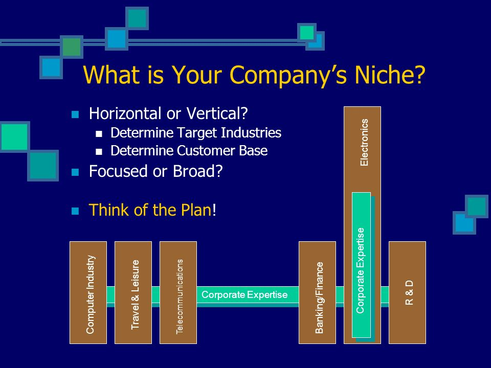 What is Your Companys Niche. Horizontal or Vertical.