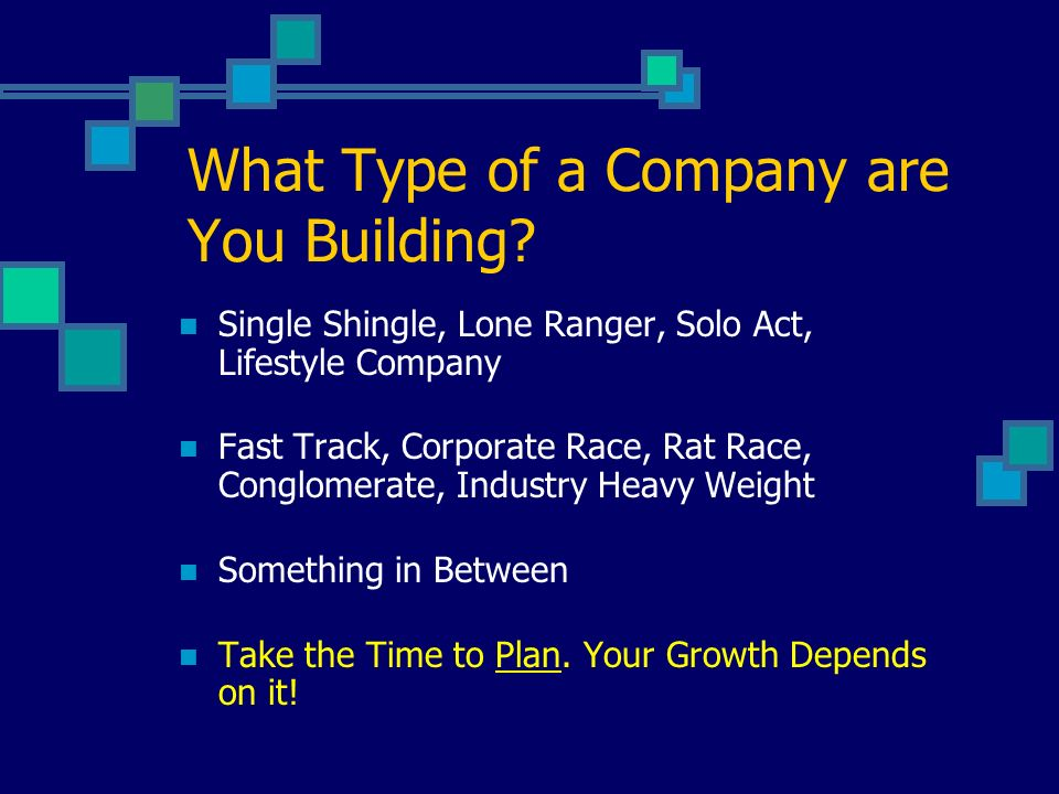 What Type of a Company are You Building.