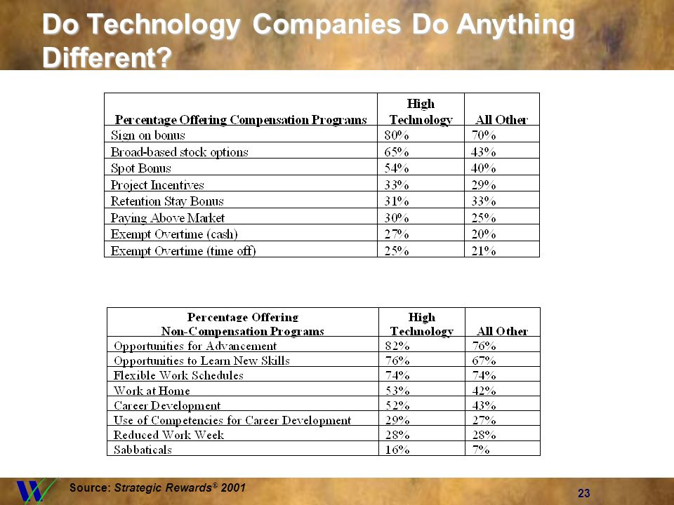 23 Do Technology Companies Do Anything Different? Source: Strategic Rewards ® 2001