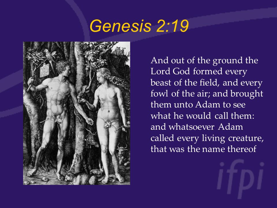 Genesis 2:19 And out of the ground the Lord God formed every beast of the field, and every fowl of the air; and brought them unto Adam to see what he would call them: and whatsoever Adam called every living creature, that was the name thereof