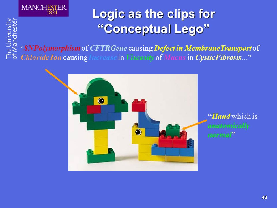 43 Logic as the clips for Conceptual Lego SNPolymorphism of CFTRGene causing Defect in MembraneTransport of Chloride Ion causing Increase in Viscosity