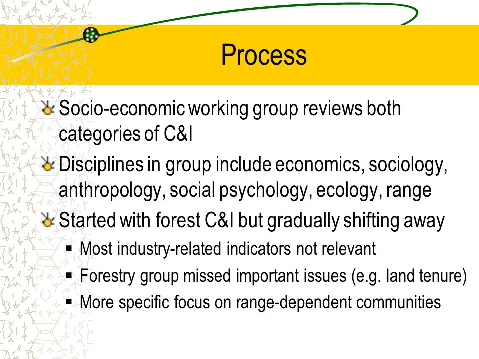 Process Socio-economic working group reviews both categories of C&I Disciplines in group include economics, sociology, anthropology, social psychology, ecology, range Started with forest C&I but gradually shifting away Most industry-related indicators not relevant Forestry group missed important issues (e.g.
