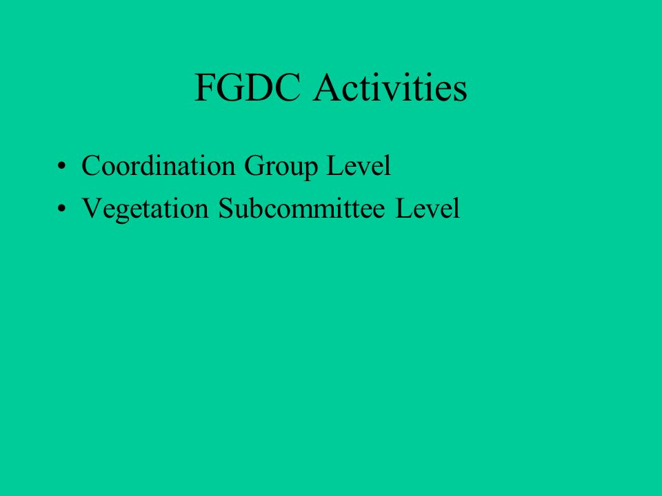 Current FGDC Coordination Group Discussions Geospatial One-Stop Spatial Data Transfer Standards Strategy for the Implementation Plan on Commercial Remote Sensing Policy National Spatial Data Infrastructure Interagency Linkage Understanding the FGDC Standards Process