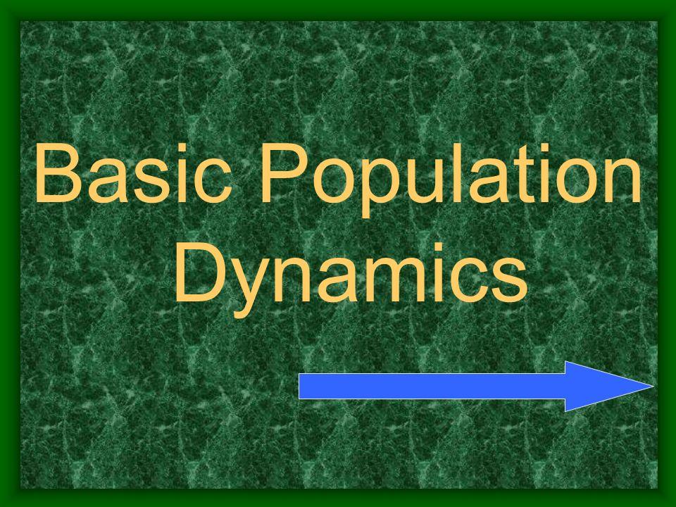 Basic Population Dynamics