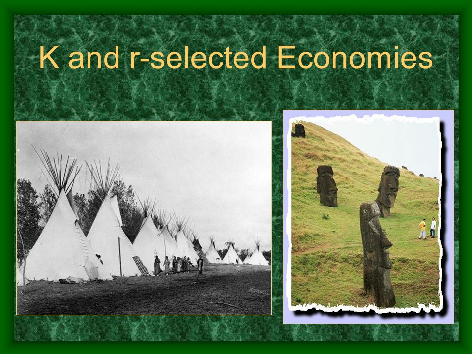 K and r-selected Economies