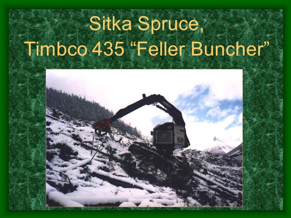 Sitka Spruce, Timbco 435 Feller Buncher