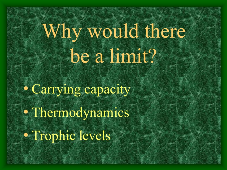 Why would there be a limit? Carrying capacity Thermodynamics Trophic levels