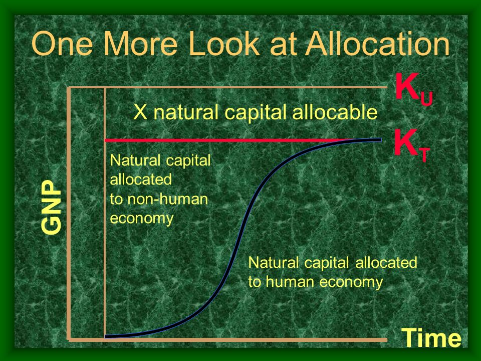 KTKT GNP Natural capital allocated to human economy Natural capital allocated to non-human economy X natural capital allocable Time KUKU One More Look