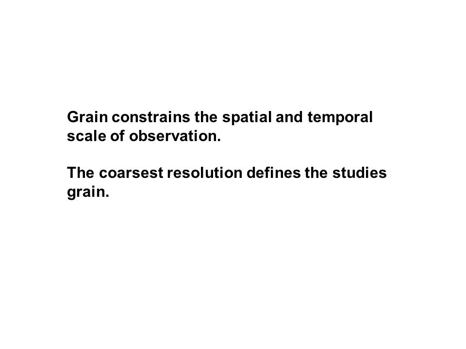 Grain constrains the spatial and temporal scale of observation.