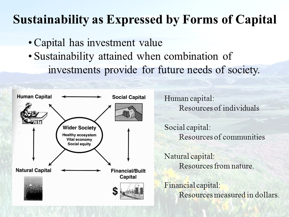 Sustainability as Expressed by Forms of Capital Capital has investment value Sustainability attained when combination of investments provide for futur